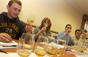 Diageo Training Group